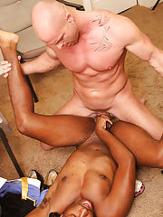 Images of males with large erections and big gay cocks rubbing heads together at My Gay Boss