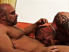 Jake and Axel have gorgeous bodies, buff and defined with delicious hairy chests gay office bear at Alpha Male Fuckers